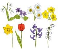Abbildung der Frühlings-Blumen eingestellt stock abbildung