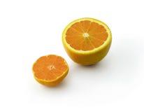 Abbildung der Frucht Lizenzfreies Stockfoto