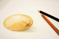 Abbildung der orange Zeichnung und der Bleistifte Stockfoto