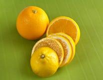 Abbildung der Orangen Lizenzfreies Stockbild