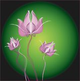Abbildung der rosafarbenen Frühlings-Blumen Stockfotografie