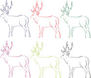 Abbildung der Rotwild Stockbilder