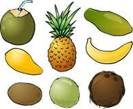 Abbildung der tropischen Früchte Stockbild