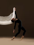 Abbildung des Balletts dancer Stockbilder