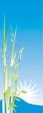 Abbildung des Bambusbaums Stockfotografie