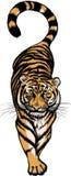 Abbildung des duckenden Tigers Lizenzfreies Stockfoto