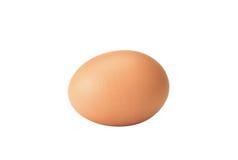 Abbildung des Eies Stockfotos