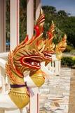 Abbildung des goldenen Naga (Drache) im siamesischen Tempel Stockfotos