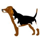 Abbildung des Hundes auf Weiß Lizenzfreies Stockbild