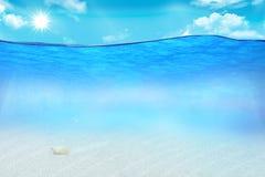 Abbildung des Meeresflora und -fauna Stockfotografie