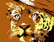 Abbildung des Tigergesichtes Stockfoto