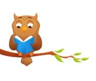 Abbildung einer klugen Eule, die ein Buch liest Lizenzfreie Stockfotografie