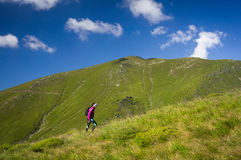 Abbildung eingelassene polnische Berge Lizenzfreies Stockfoto