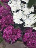 Abbildung für smellcomp Helle Blumen und Grünpflanzen stehen in den Töpfen auf Regalen und in den Behältern im Speicher verpackt Lizenzfreie Stockfotos