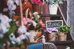Abbildung für smellcomp Schaukasten, Zähler Stockfotografie