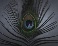 Abbildung handgemalt mit Aquarell Stockbilder