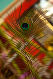 Abbildung handgemalt mit Aquarell Stockbild
