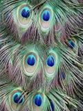 Abbildung handgemalt mit Aquarell Stockfoto