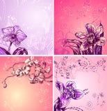 Abbildung mit netten bunten Orchideen, Platz für Stockbilder