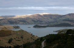 Abbildung von den Porthügeln in Neuseeland Stockfotografie