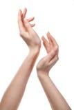 Abbildung von den weiblichen Händen getrennt Stockfotografie