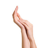 Abbildung von den weiblichen Händen trennte Stockfotografie