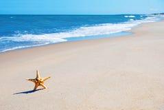 Abbildung von tropischem Meer und von Himmel Lizenzfreies Stockfoto