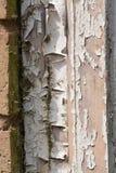 Abblätternde Farbe von einem hölzernen Fensterrahmen der Verrottung stockfotos