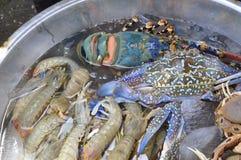 Abbondanza delle industrie della pesca e dei frutti di mare freschi in un mercato locale Fotografia Stock Libera da Diritti