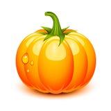 Abóbora de Halloween Imagem de Stock Royalty Free