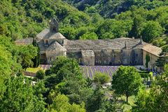 Abbotskloster av Senanque Arkivfoto