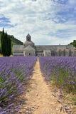 Abbotskloster av Senanque Royaltyfri Foto