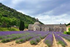 Abbotskloster av Senanque Royaltyfri Fotografi