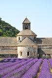Abbotskloster av Senanque Arkivbilder
