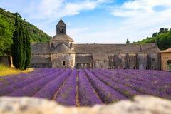 Abbotskloster av Senanque Royaltyfria Foton