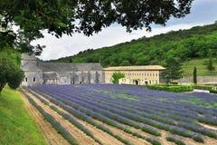 Abbotskloster av Senanque, Frankrike Royaltyfria Foton