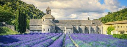 Abbotskloster av Senanque i morgonljus Fotografering för Bildbyråer