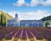 Abbotskloster av Senanque med lavanderfältet provence Royaltyfria Foton