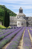 Abbotskloster av Senanque nära byn av Gordes med lavendelfältet Arkivbild
