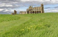 Abbotskloster av whitby, yorkshire, England Arkivfoton