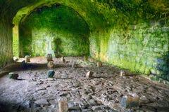 Abbotskloster fördärvar, Quin, Irland Royaltyfria Bilder