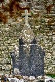 Abbotskloster fördärvar, Quin, Irland Royaltyfri Bild