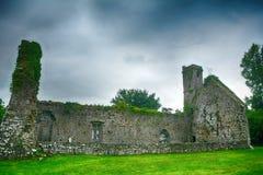 Abbotskloster fördärvar, Quin, Irland Royaltyfri Fotografi