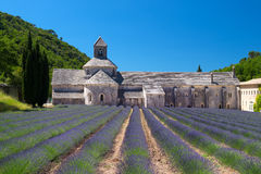 Abbotskloster i franska Senanque Royaltyfri Foto