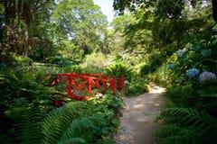Abbottbury Tropische Tuinen Dorset het UK stock afbeeldingen