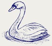 Abbozzo del cigno illustrazione di stock