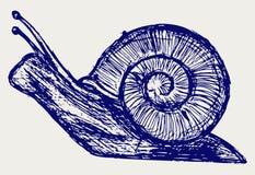 Abbozzo della lumaca illustrazione vettoriale