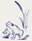 Abbozzo della rana illustrazione di stock