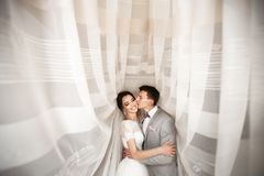 Abbracci le giovani coppie sul giorno delle nozze fotografia stock