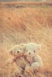 Abbracciare degli orsacchiotti di amore delle coppie Fotografie Stock